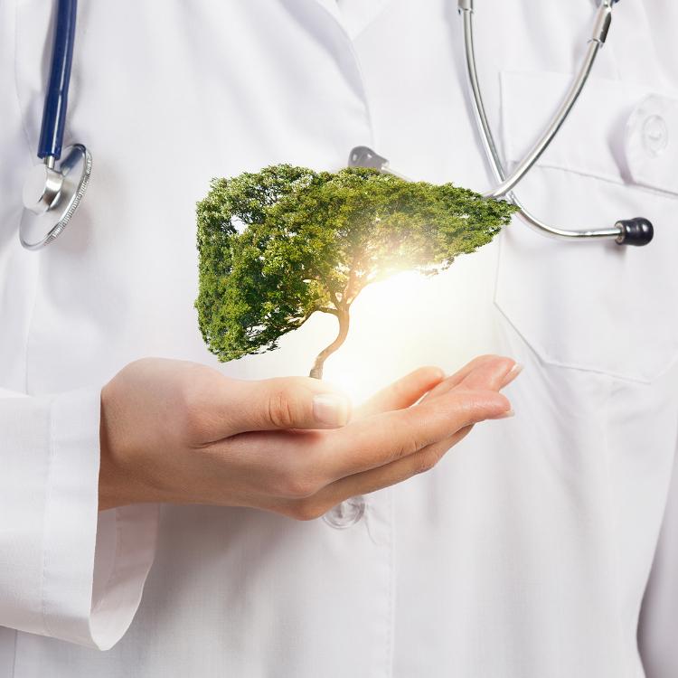 Epatologi: corretto stile vita fondamentale per buona salute fega...
