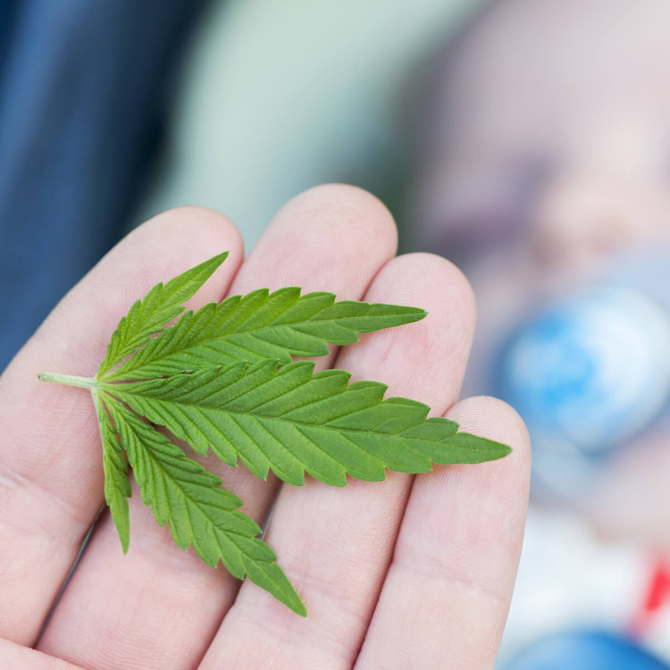 Ricerca, cannabis in gravidanza espone i bambini a effetti psicot...