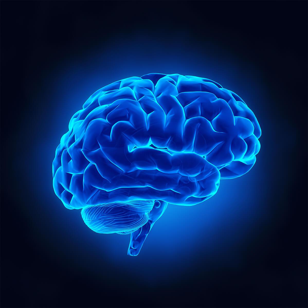 Ricerca, ridurre paura legata a un ricordo con stimolazione cereb...
