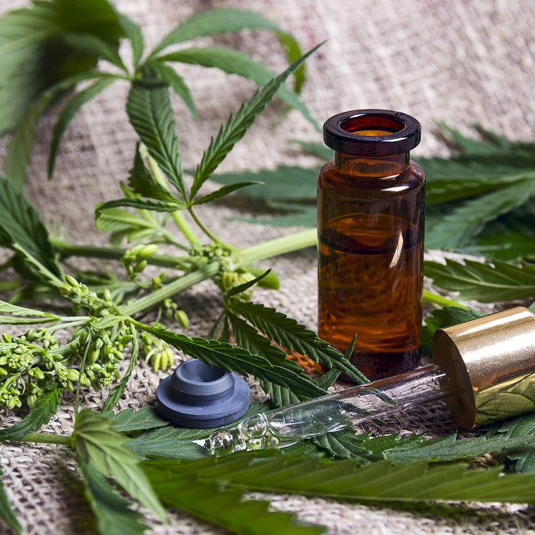 L'ONU riconosce cannabis terapeutica: verso passo avanti storico