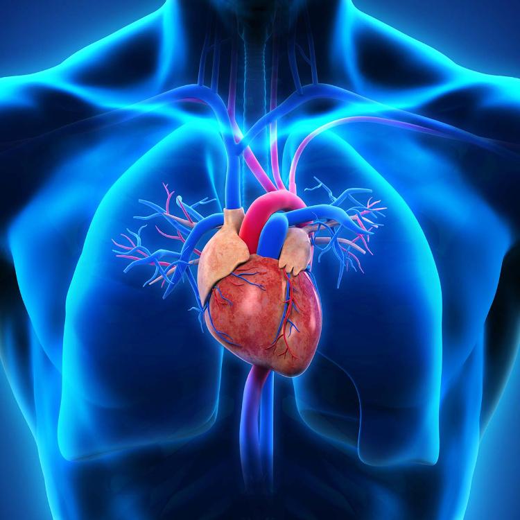 Stenosi aortica, procedura mininvasiva TaVi anche per over 75